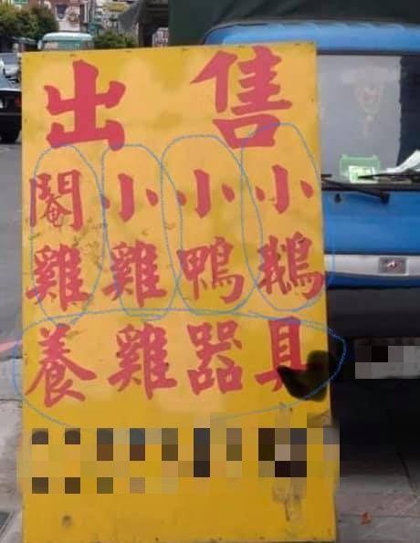 ▲老闆的意思其實是「出售:閹雞、小雞、小鴨、小鵝、養雞器具」。(圖/翻攝自《爆廢公社》