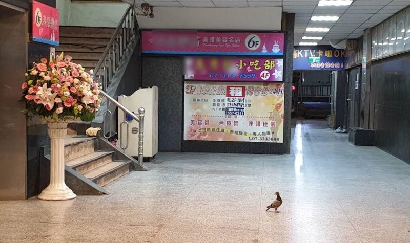 ▲高雄市防疫升級,休閒娛樂場所皆暫停營業,在高雄知名的娛樂大樓前遇見一隻「鴿子」,意外被警方拍下「門可羅雀」的有趣照片。(圖/三民一分局提供)
