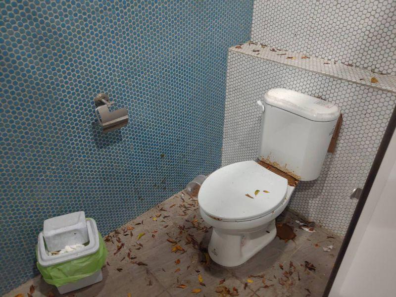 中市長春公園公廁「屎」滿為患 議員批三不管
