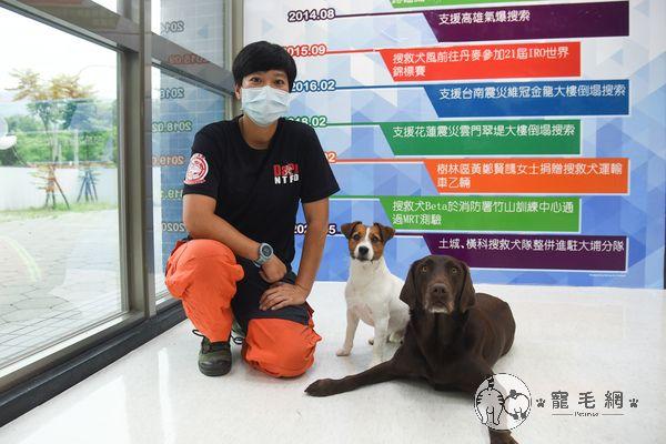 ▲搜救犬的領犬員羅浩芳表示:「太魯閣號車體破碎,瀰漫嚴重的油氣味、血腥味,氣味算是非常複雜,牠們行進的路線是比較危險的狀態。