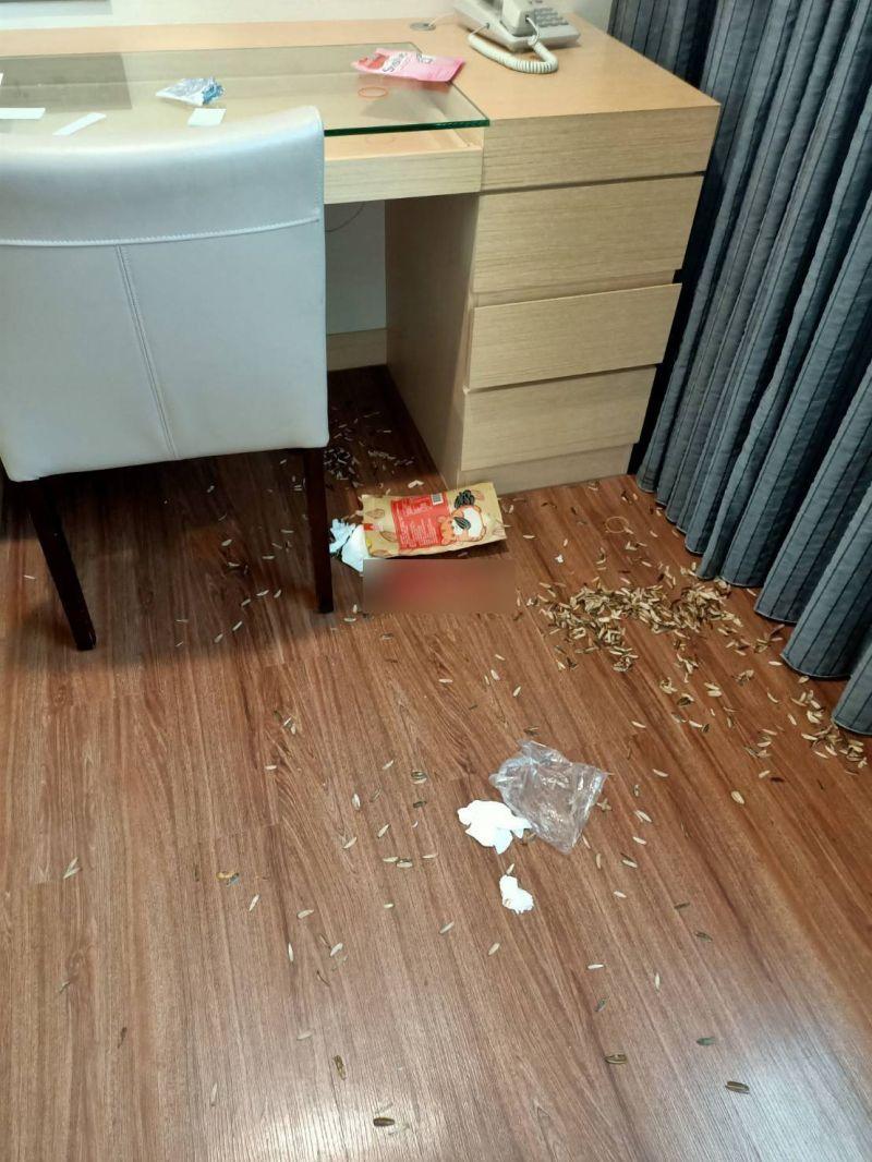 ▲隔離中的嫌犯把防疫旅館弄得一團亂,滿地瓜子殼。(圖/翻攝畫面)