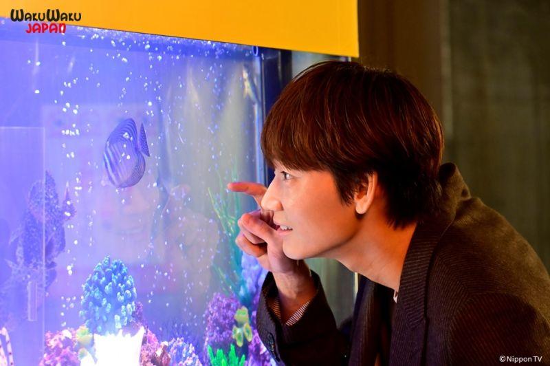 ▲綾野剛為《深深地戀愛》男主角。(圖/WAKUWAKU