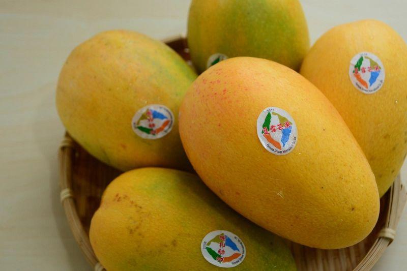 ▲號稱是芒果界LV的「夏雪芒果」。(圖/翻攝自農委會官網)