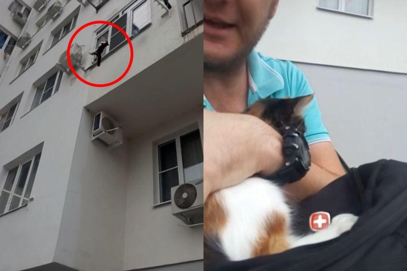 ▲貓咪高掛曬衣繩,人類在下方試圖接住牠。(圖/AP+ Jukin Media授權提供)