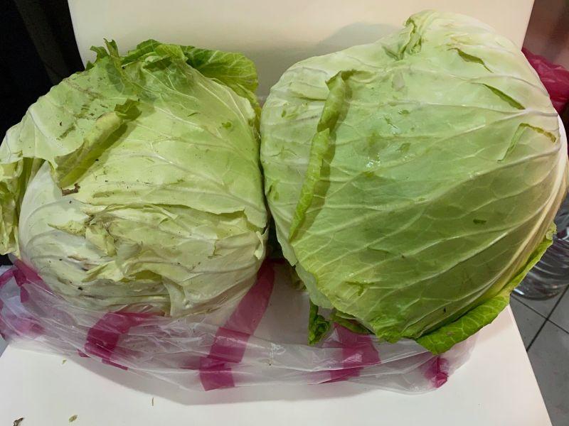 買2顆高麗菜被收「天價」 曹西平嚇傻:不太理解