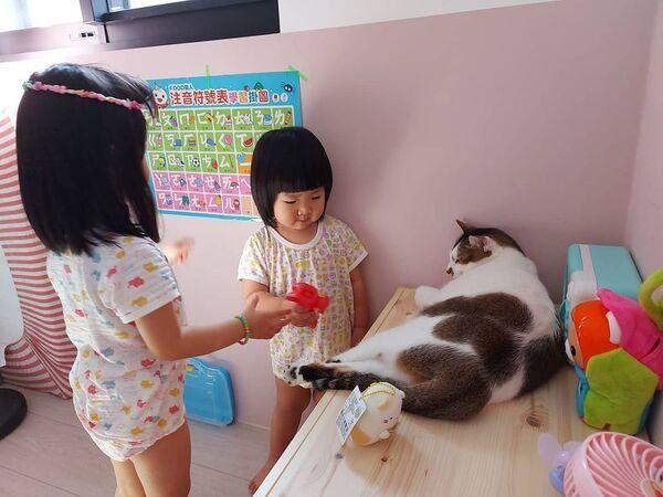 ▲網友鄧小姐的兩個小女兒停課在家,貓保母貼心「一打二」顧小孩。(圖/IG帳號@eileen2328授權)