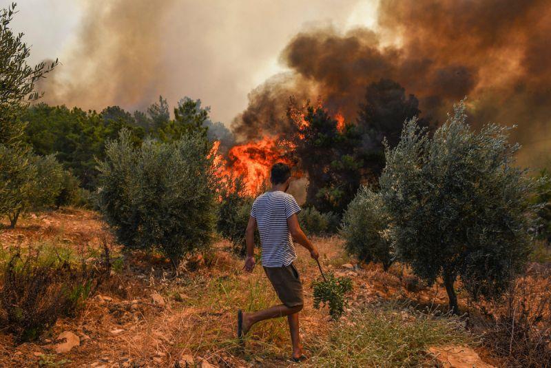 ▲土耳其正經歷比以往更嚴峻野火季節,今年已經燒掉15萬7482公頃土地,總面積高達過去13年每年平均值的將近9倍。(圖/美聯社/達志影像)