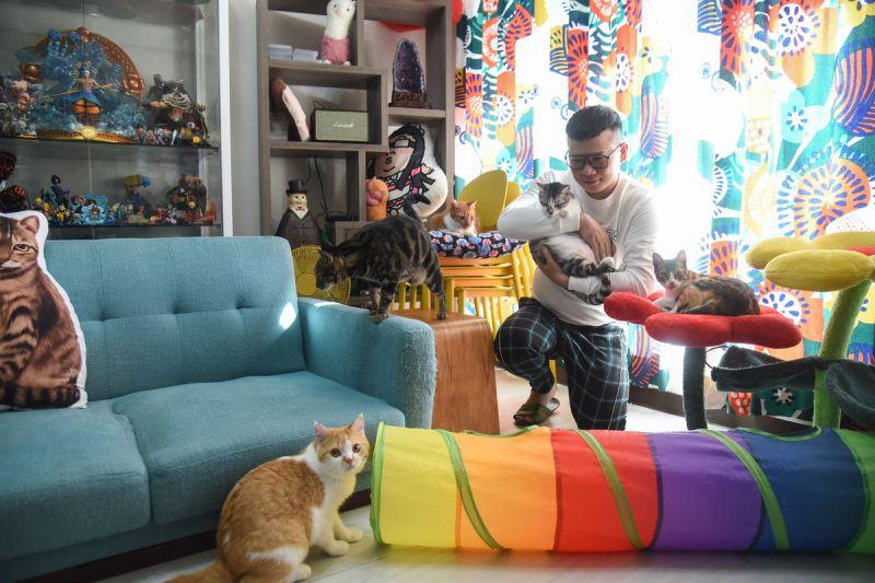▲人氣插畫家辛卡米克,因為畫貓引起飼主共鳴而聲名大噪,其實當初會養貓、全因鄰居一句話激到當天成為貓奴。(圖/寵毛網,記者陳明安攝)