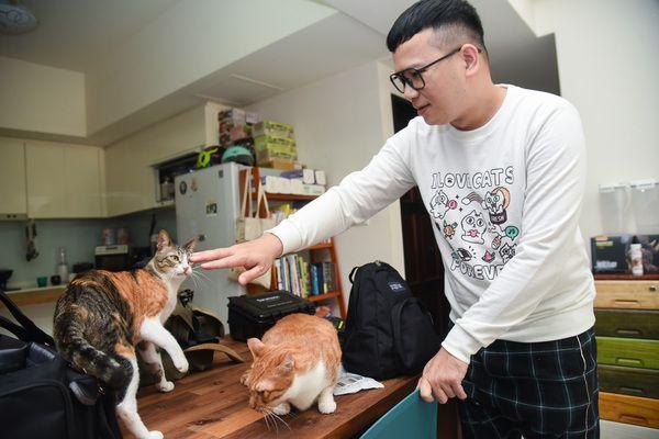 ▲辛卡米克本人跟網路的形象一樣愛貓又親切!(圖/寵毛網,記者陳明安攝)