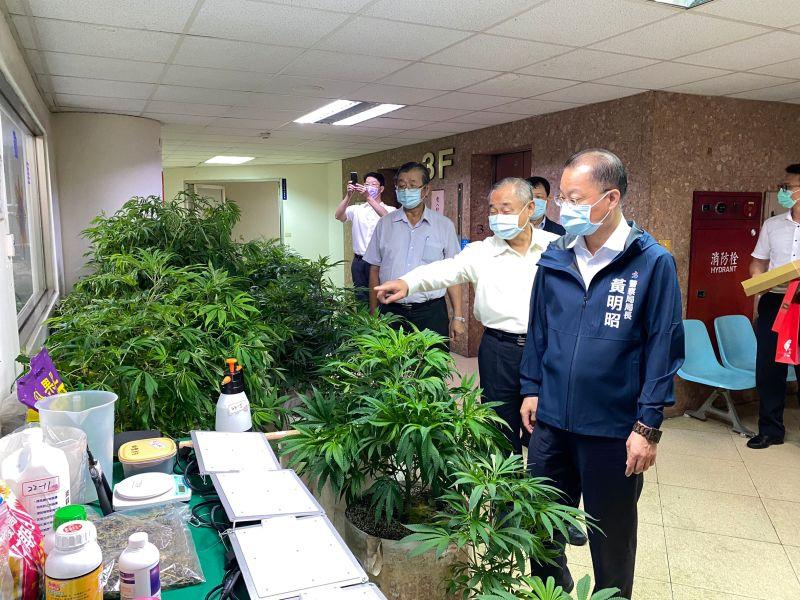 ▲三民二分局長黃文哲向警察局長黃明昭說明查獲的大麻。(圖/三民二分局提供)