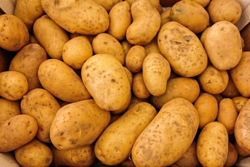 ▲馬鈴薯發芽還能吃嗎,營養師高敏敏一次列舉了10種食物,讓你用一張圖就能看清楚。(示意圖/翻攝自Pixbay)