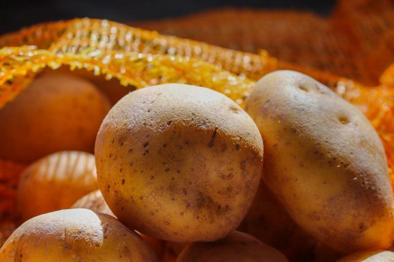 ▲馬鈴薯用途相當多元又是優良澱粉,因此時常出現在日常餐桌上。(示意圖/翻攝自pixabay)