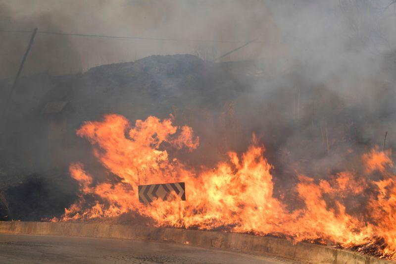 ▲義大利各地本周熱浪來襲,南部的西西里島和卡拉布里亞傳出野火災情。位於卡拉布里亞、獲聯合國教科文組織認證的地質公園也受野火威脅。(圖/美聯社/達志影像)