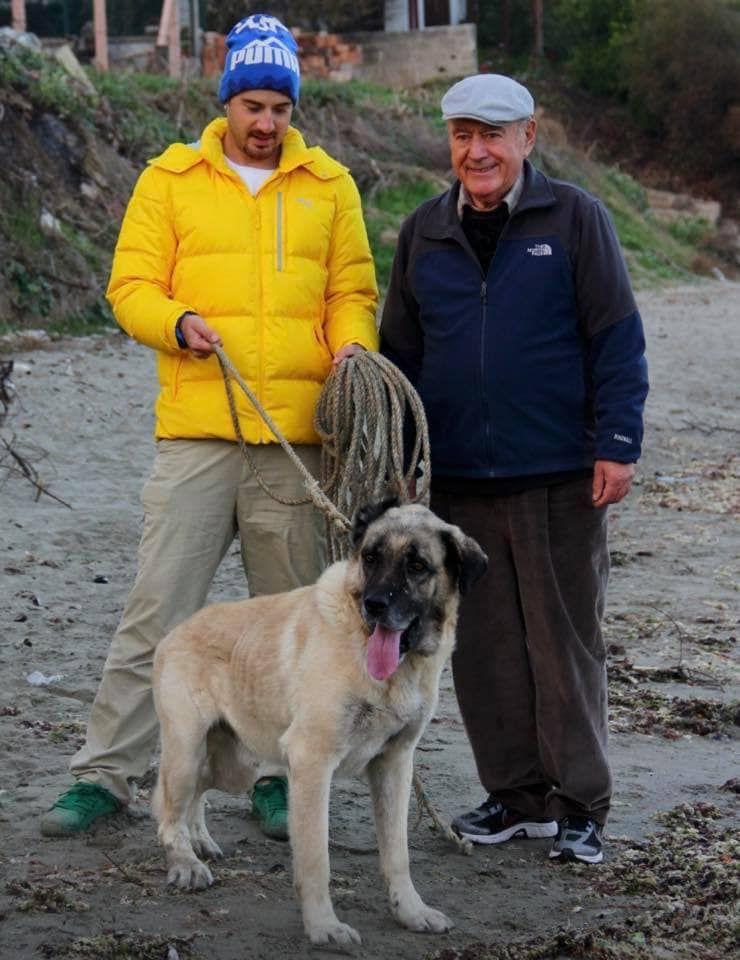 ▲吳鳳父親(右)將領養的狗視為自己的孩子。(圖/吳鳳臉書)