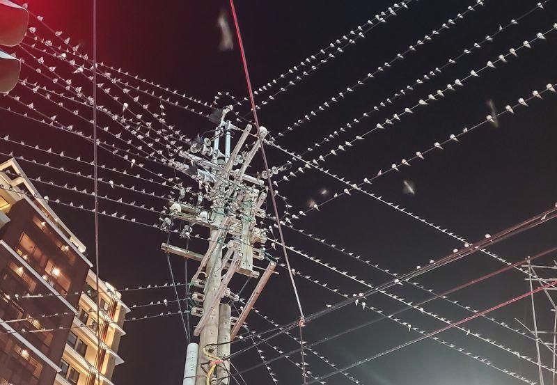 ▲網友分享路邊拍到的電線桿照,宛如「鐵絲網」的景象讓她看傻,更笑稱「聽到滴滴答答的下雨聲」。(圖/翻攝自《路上觀察學院》臉書)
