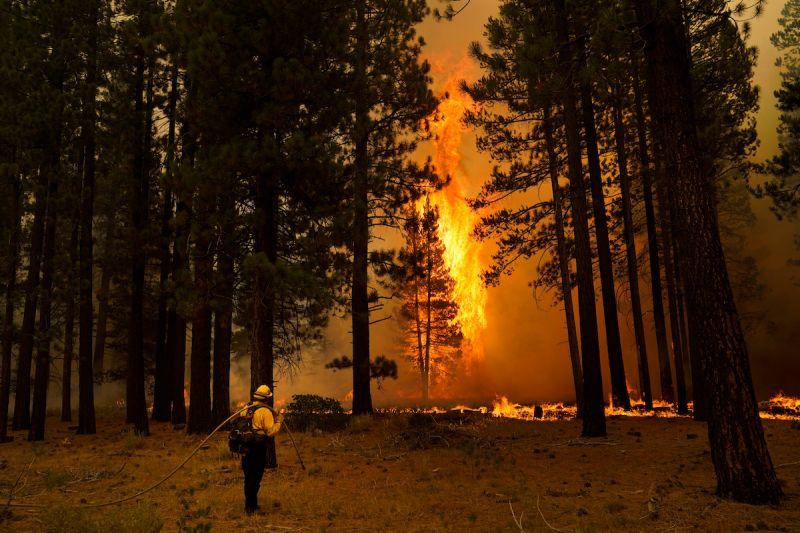 ▲加州北部近來持續受到野火威脅。(圖/美聯社/達志影像)