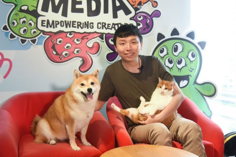 ▲爆紅柴犬Nana收編愛滋浪貓 ,飼主阿愣透露貓犬的動人相遇!