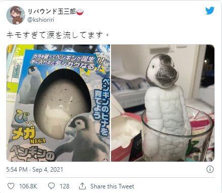 ▲恐怖的玩具企鵝因駭人的長相一夕間爆紅。(圖/擷取自推特)