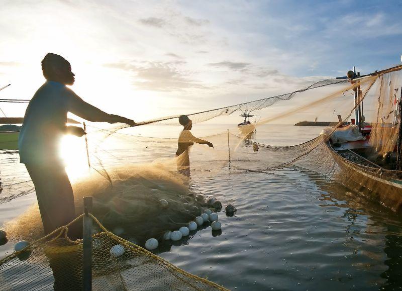 ▲漁業打撈示意圖。(示意圖僅供參考/非當事人/shutterstock)
