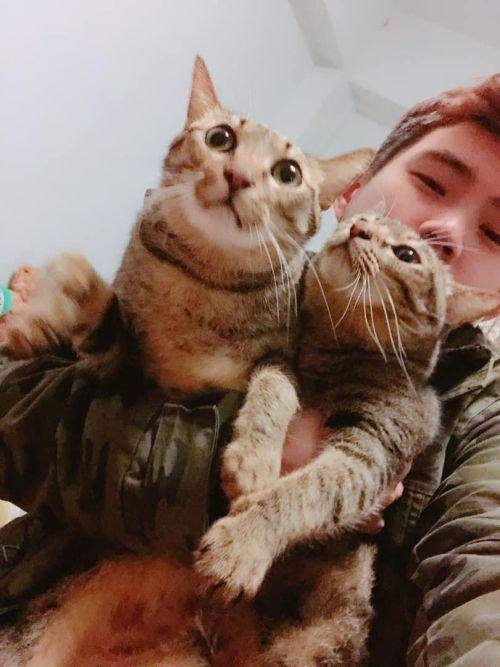 ▲朱先生之前因故半身癱瘓,便是兩隻貓貓陪他走過來的。(圖/網友朱哲毅授權提供)