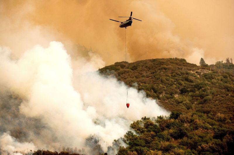 加州紅杉國家公園野火狂燒 世界最大樹木裹防火毯