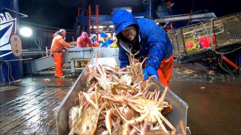 ▲16座艾美獎加持,《漁人的搏鬥》揭秘高薪捕蟹人驚險工作實錄。(圖/myVideo提供)