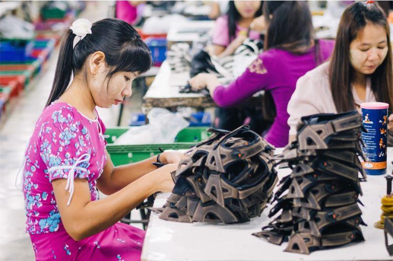 ▲民進黨呼籲勞動部正視仲介違法收取買工費議題。(圖/擷取自Shutterstock)