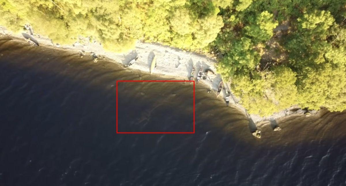 拍到「尼斯湖水怪」現身?專家秒揭真相 機師悄下架影片