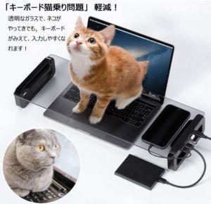▲推主找到的工作新神器!貓坐在臺架上就可以讓奴才們繼續打字。(圖/Twitter帳號:psk_sk3)