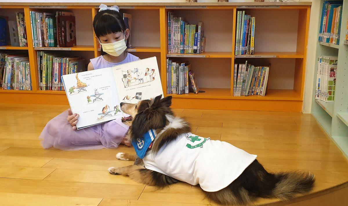 世界動物日!毛小孩化身最萌圖書館員 陪小朋友閱讀