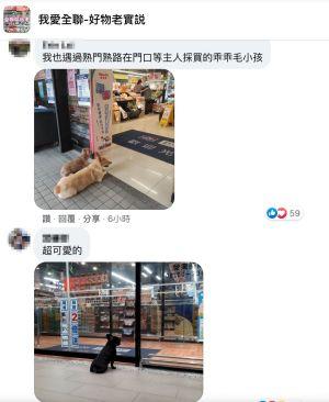 ▲也有網友PO出自己曾遇過的狗狗。(圖/翻攝自《我愛全聯-好物老實説》)