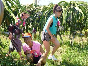 ▲浩子(中)Cue籃籃(右)、廖苡喬(左)表演「催情反應」。(圖/民視提供)
