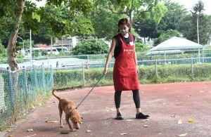 ▲米可白很鼓勵大家來當狗志工,給狗狗短暫的溫暖。(圖/寵毛網,記者林調遜攝)
