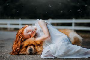 ▲對待老年狗狗,保持耐心和溫柔非常重要。(圖/pexels)