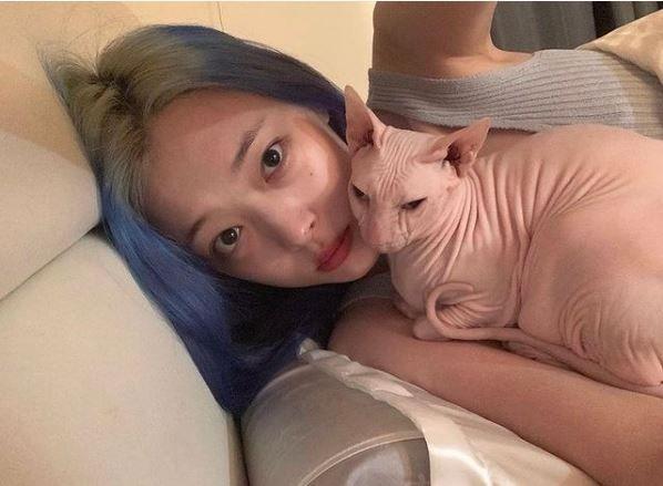 ▲南韓知名女星崔雪莉與愛貓布林。(圖/翻攝自布林IG)